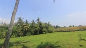 38 000 Euros – Land 10 to 23 ares in Canggu-Pererenan (Ref: TTULEG)
