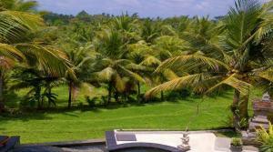 Location Ubud Bungalow Diwana (1 chambre)